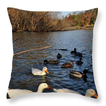 Ducks On The Lake.  Throw Pillow by Diane Lent