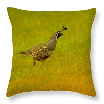 Dude Dont Shoot Me Throw Pillow by Jeff Swan