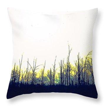 Dudleytown Throw Pillow