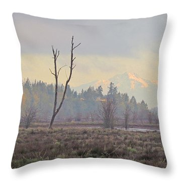 Throw Pillow featuring the photograph Due North  by I'ina Van Lawick