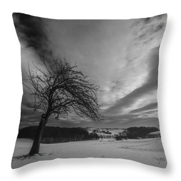 Throw Pillow featuring the photograph Duel by Davorin Mance