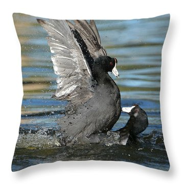 Duel Throw Pillow by Fraida Gutovich