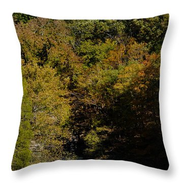 Dunbar Cave And Swan Lake Throw Pillow