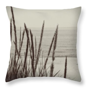 Dune Grass In Early Spring Throw Pillow by Michelle Calkins