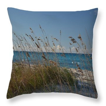 Dune Grasses Throw Pillow by Judy Wolinsky