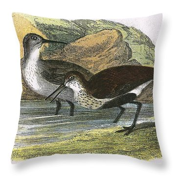Dunlin Throw Pillow by English School