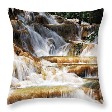 Dunn Falls _ Throw Pillow