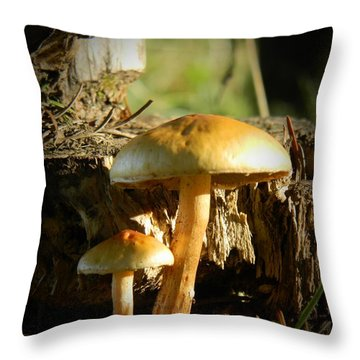 Duo Throw Pillow by Chalet Roome-Rigdon