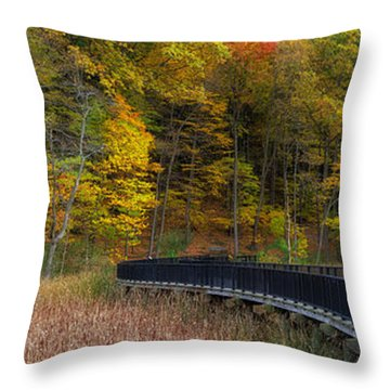 Durand Eastman Park Throw Pillow