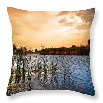 Dusk Lights Throw Pillow by Svetlana Sewell