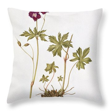 Dusky Cranesbill Throw Pillow