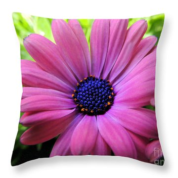 Dusky Rose Fortunette Throw Pillow
