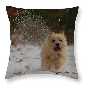 Dusted Throw Pillow by Molly Poole
