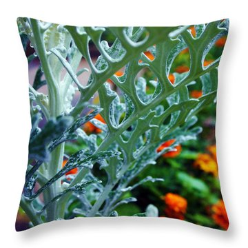 Throw Pillow featuring the photograph Dusty Miller And Dew Drops by Deborah Fay
