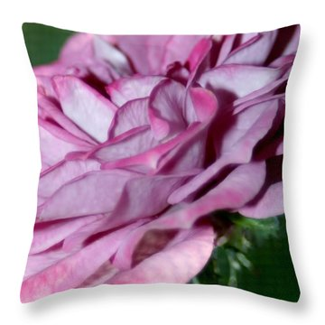 Dusty Rose Throw Pillow by Barbara S Nickerson