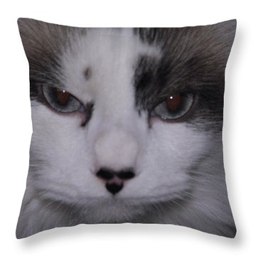Dusty - The Cat's Meow Throw Pillow by Robyn Stacey