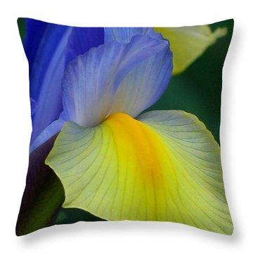 Dutch Beauty Throw Pillow