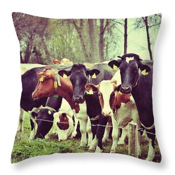 Throw Pillow featuring the photograph Dutch Cows by Nick  Biemans