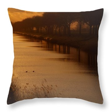 Dutch Landscape Throw Pillow