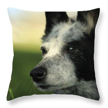 Dutchess Throw Pillow