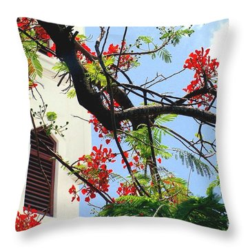 Duval Street Flame Tree Throw Pillow by Valerie Reeves