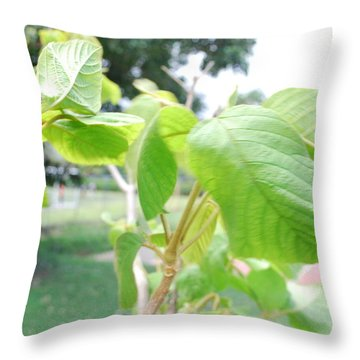 duy Throw Pillow