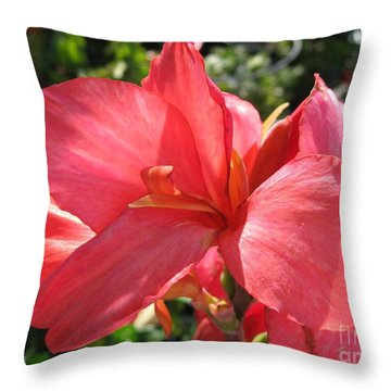 Dwarf Canna Lily Named Shining Pink Throw Pillow by J McCombie