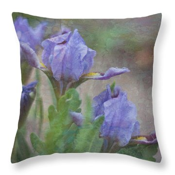 Dwarf Iris With Texture Throw Pillow by Patti Deters