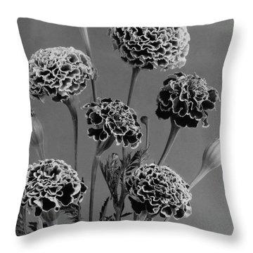 Dwarf Monarch Marigolds Throw Pillow