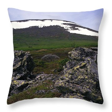 Throw Pillow featuring the photograph Dyatlov's Pass by Vladimir Kholostykh