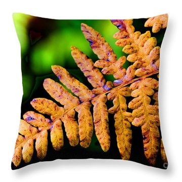 Dying Beauty Throw Pillow by Tap On Photo