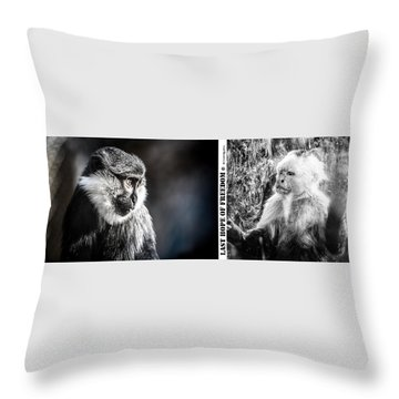 Throw Pillow featuring the photograph diptych Last hope of Freedom  by Stwayne Keubrick