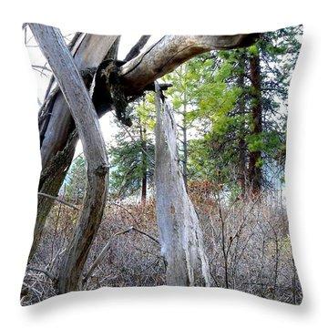 E T Throw Pillow by Will Borden