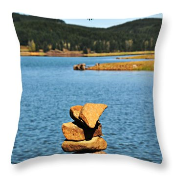 Throw Pillow featuring the photograph Eagle At Cottage Grove Lake by Mindy Bench