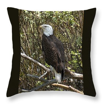 Throw Pillow featuring the photograph Eagle by Donald Williams