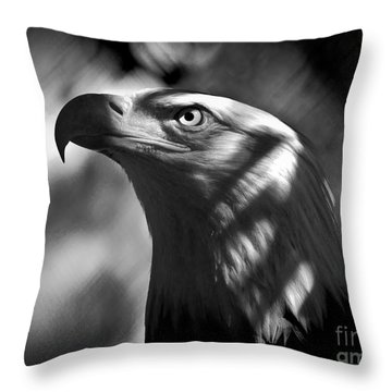 Eagle In Shadows Throw Pillow by Robert Frederick