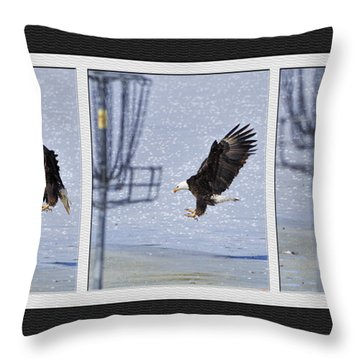 Eagle Triptych Throw Pillow by Rob Graham