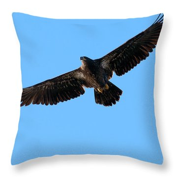 Eagle Wings Throw Pillow