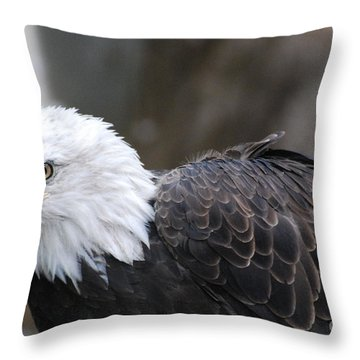 Eagle With Ruffled Feathers Throw Pillow by DejaVu Designs