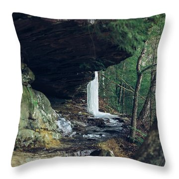 Eaglefalls Trail In Winter Throw Pillow