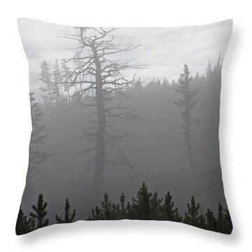 Eagle's Nest In Fog Throw Pillow