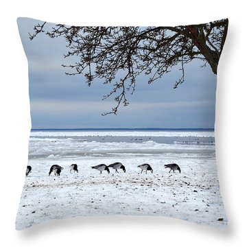 Throw Pillow featuring the photograph Early Arrival by Kennerth and Birgitta Kullman