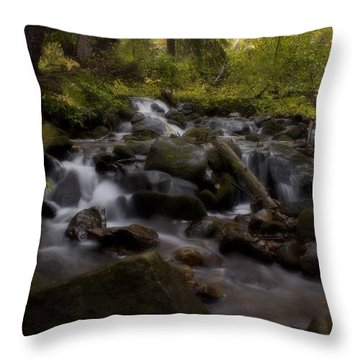 Throw Pillow featuring the photograph Early Autumn Cascades by Ellen Heaverlo