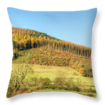 Early Autumn Throw Pillow by David Birchall