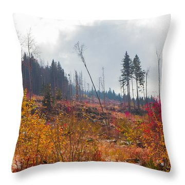 Throw Pillow featuring the photograph Early Autumn Yellow Red Colored Mountain View by Jivko Nakev