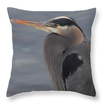 Early Bird 2 Throw Pillow