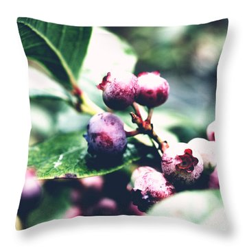 Early Blueberries Throw Pillow by Rachel Mirror