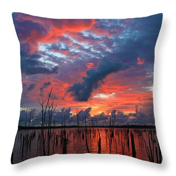 Early Dawns Light Throw Pillow by Roger Becker