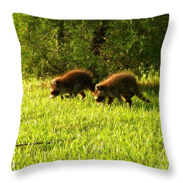 Early Evening Explorers Throw Pillow