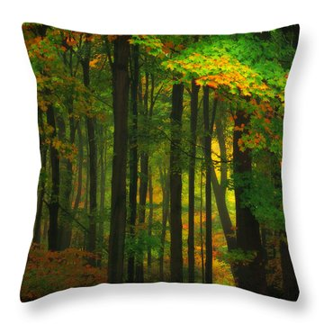 Early Fall 4 Throw Pillow by Emmanuel Panagiotakis